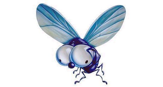 La mosca contemplativa.
