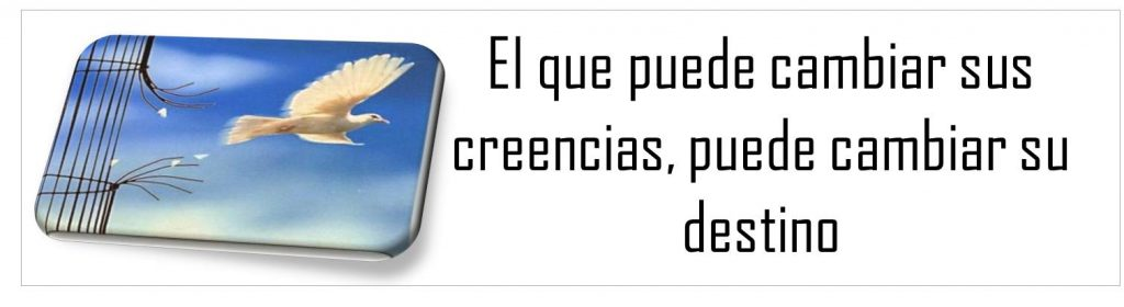 bannercreencias